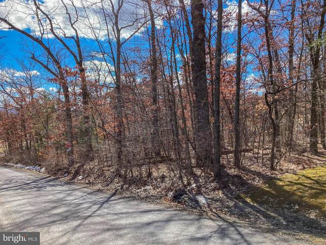 M Street Lots 1201 & 1203, OAKLAND, MD 21550 (#MDGA134596) :: AJ Team Realty
