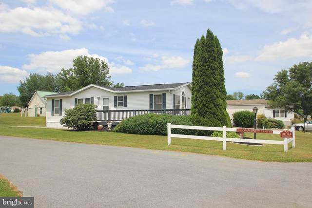 133 Rustic Drive, SHIPPENSBURG, PA 17257 (#PACB132542) :: Iron Valley Real Estate