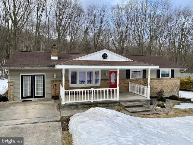 587 Seltzer Road, POTTSVILLE, PA 17901 (#PASK134370) :: TeamPete Realty Services, Inc