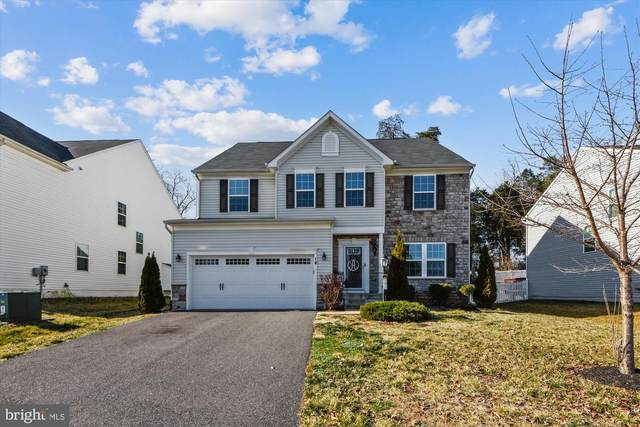 14 Clear Spring Lane, FREDERICKSBURG, VA 22405 (#VAST229768) :: City Smart Living