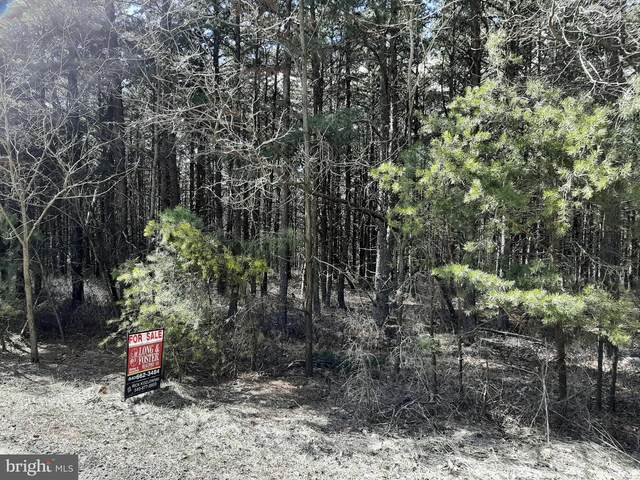 LOT 94 Baker Mountain Drive, YELLOW SPRING, WV 26865 (#WVHS115336) :: Network Realty Group