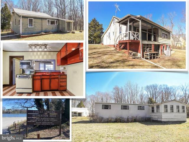 24984 Forrest Cove Way, HOLLYWOOD, MD 20636 (#MDSM174848) :: The Maryland Group of Long & Foster Real Estate