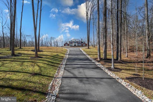 119 Clarks Run Road, GREAT FALLS, VA 22066 (#VAFX1184784) :: The Yellow Door Team