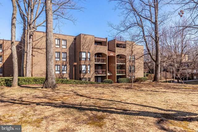 11212 Chestnut Grove Square #216, RESTON, VA 20190 (#VAFX1184914) :: Debbie Dogrul Associates - Long and Foster Real Estate