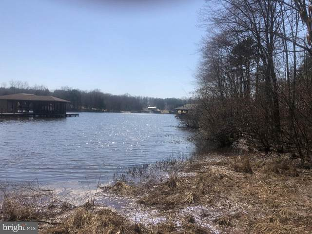 3815 Outer Banks Lane, BUMPASS, VA 23024 (#VASP229406) :: Network Realty Group