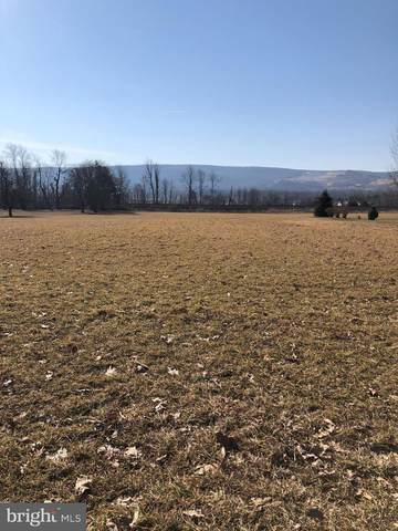 441 Pine Road, MOUNT HOLLY SPRINGS, PA 17065 (#PACB132600) :: The Heather Neidlinger Team With Berkshire Hathaway HomeServices Homesale Realty