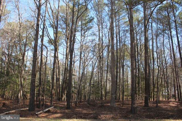 Lot 18 Croppers Island Road, NEWARK, MD 21841 (#MDWO120718) :: The Allison Stine Team