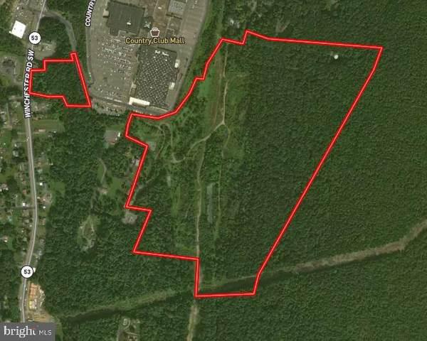 Winchester-Vocke Road, LAVALE, MD 21502 (#MDAL136382) :: AJ Team Realty