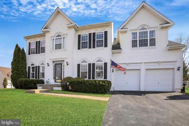 17246 Early Avenue, ROUND HILL, VA 20141 (#VALO432598) :: Tom & Cindy and Associates
