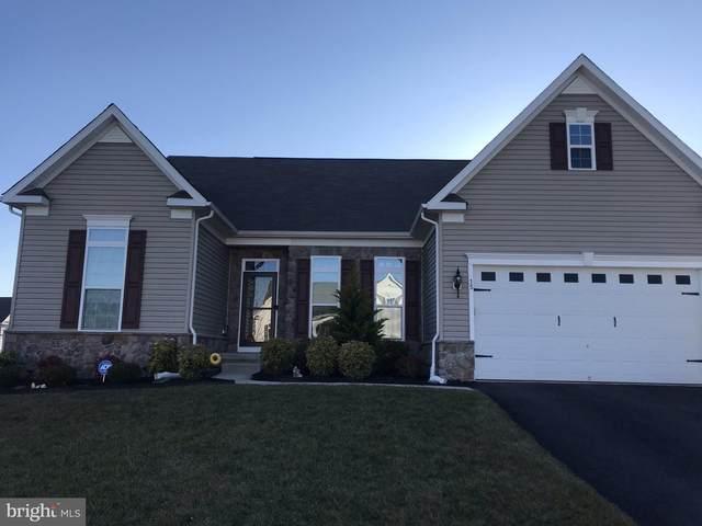 15 Daly Terrace, SMYRNA, DE 19977 (#DEKT247002) :: Jason Freeby Group at Keller Williams Real Estate