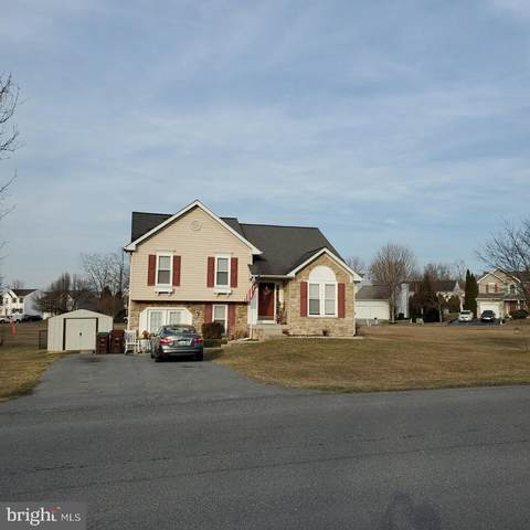 Molly Pitcher, GREENCASTLE, PA 17225 (#PAFL178478) :: The Sky Group