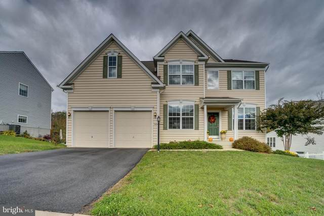 11 Tenola Court, FREDERICKSBURG, VA 22405 (#VAST229926) :: Shawn Little Team of Garceau Realty
