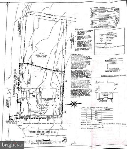45449 Persimmon Lane, STERLING, VA 20165 (#VALO432712) :: Ram Bala Associates | Keller Williams Realty