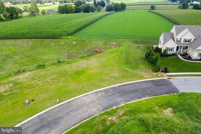 155 Bonneville Drive #3, RONKS, PA 17572 (#PALA178606) :: Iron Valley Real Estate
