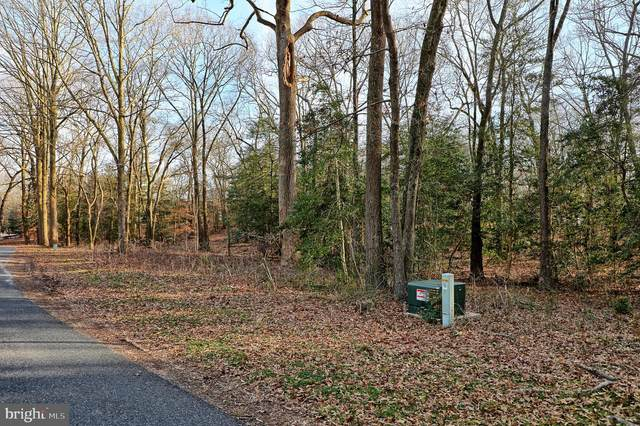 VACANT LOT 23 Dogwood Drive, LAUREL, DE 19956 (#DESU179120) :: Brandon Brittingham's Team