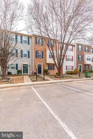 1403 Meadow Drive, FREDERICKSBURG, VA 22405 (#VAST229986) :: Crossman & Co. Real Estate