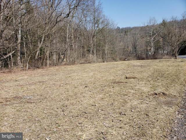Lot 2 Cold Storage Road, NEW BLOOMFIELD, PA 17068 (#PAPY103172) :: The Heather Neidlinger Team With Berkshire Hathaway HomeServices Homesale Realty