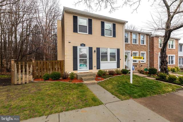 8601 Spring Creek Court, SPRINGFIELD, VA 22153 (#VAFX1186202) :: Advance Realty Bel Air, Inc