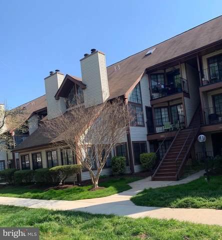 6026-A Curtier Drive, ALEXANDRIA, VA 22310 (#VAFX1186224) :: Dart Homes