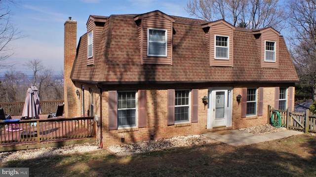 410 Evergreen Road, NEW CUMBERLAND, PA 17070 (#PAYK154388) :: The Joy Daniels Real Estate Group