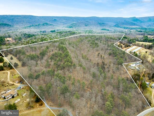 Lot 19 Runions Creek, BROADWAY, VA 22815 (#VARO101512) :: Debbie Dogrul Associates - Long and Foster Real Estate