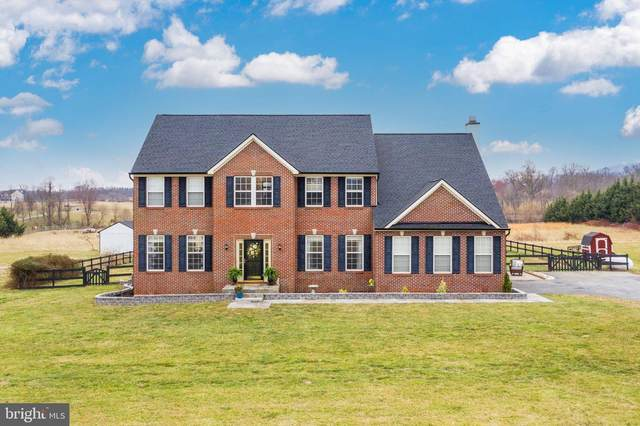 38531 Triticum Lane, LOVETTSVILLE, VA 20180 (#VALO432958) :: The Miller Team