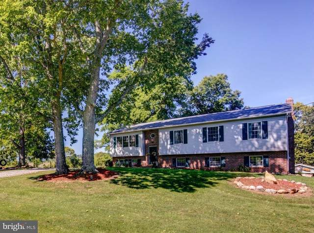 1065 Laurel Grove Road, WINCHESTER, VA 22602 (#VAFV162696) :: Crossman & Co. Real Estate