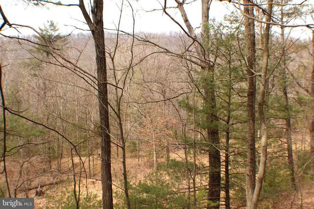 Lot 14 Leisure Acres Road, WARDENSVILLE, WV 26851 (#WVHD106700) :: SURE Sales Group