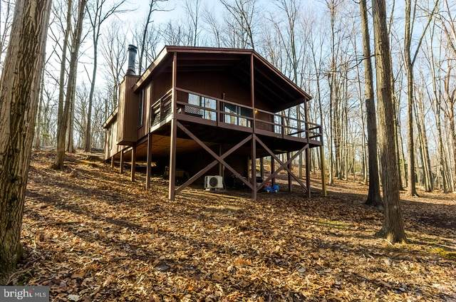 466 Cayuga Trail, HEDGESVILLE, WV 25427 (#WVBE184362) :: Realty One Group Performance