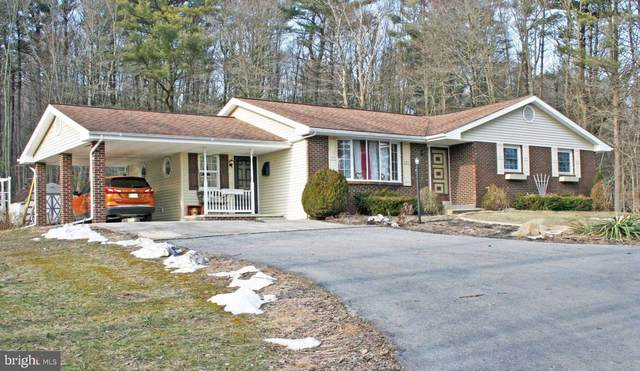 46 Morgan Lane, PINE GROVE, PA 17963 (#PASK134484) :: The Joy Daniels Real Estate Group
