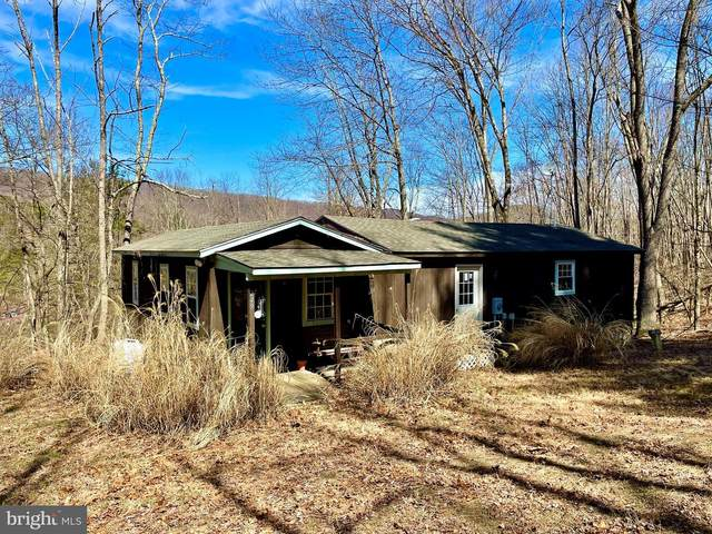 249 Meadow View Drive, LOST RIVER, WV 26810 (#WVHD106708) :: Berkshire Hathaway HomeServices McNelis Group Properties