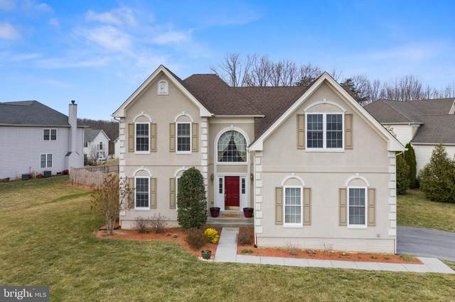 101 Aulee Court, WINCHESTER, VA 22602 (#VAFV162728) :: Shawn Little Team of Garceau Realty