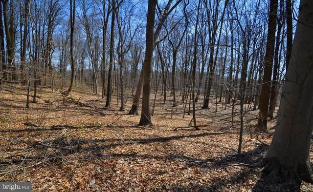 100 Timber Ridge Lane, CHADDS FORD, PA 19317 (#PACT531344) :: Erik Hoferer & Associates
