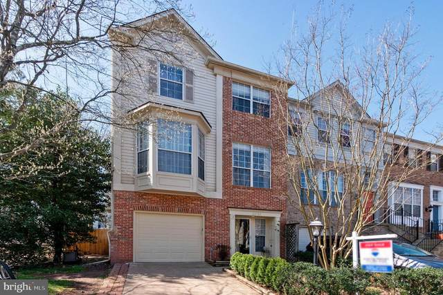 20757 Breezy Point Terrace, STERLING, VA 20165 (#VALO433192) :: Colgan Real Estate