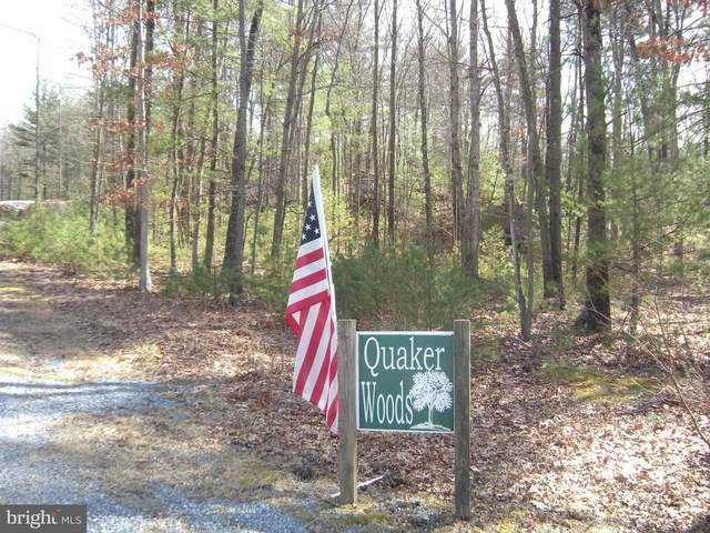 Lot #2 Quaker Woods Lane, CAPON BRIDGE, WV 26711 (#WVHS115402) :: AJ Team Realty