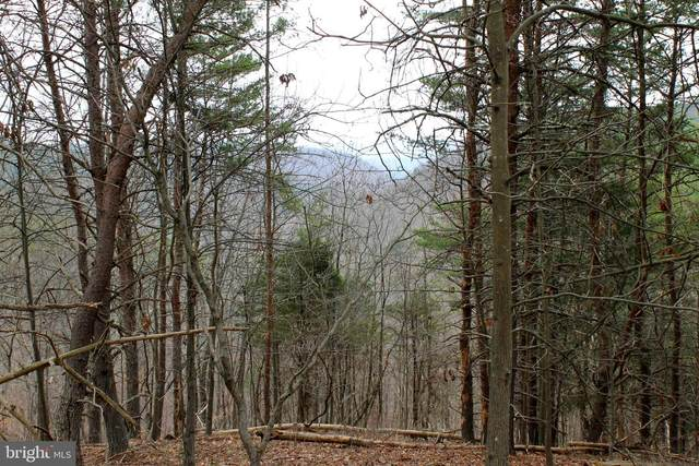 Lot 84 Graces Cabin Road, SPRINGFIELD, WV 26763 (#WVHS115408) :: ROSS | RESIDENTIAL