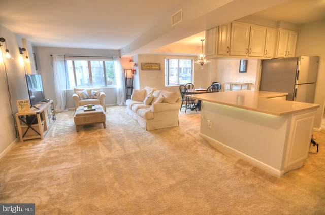 5340 Holmes Run Parkway #202, ALEXANDRIA, VA 22304 (#VAAX257302) :: Colgan Real Estate