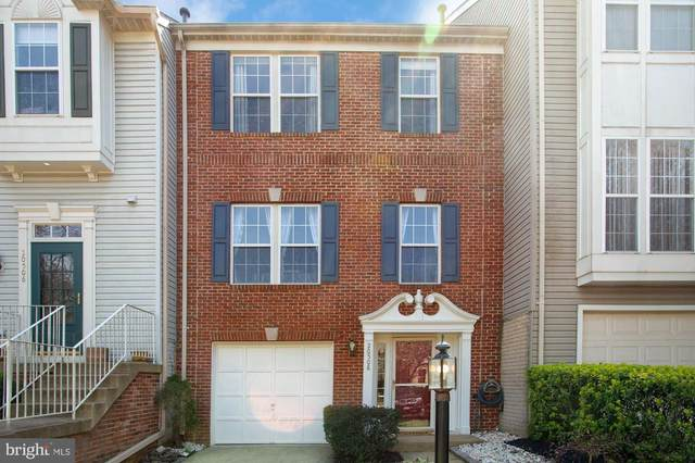 20508 Ashley Terrace, STERLING, VA 20165 (#VALO433338) :: Colgan Real Estate