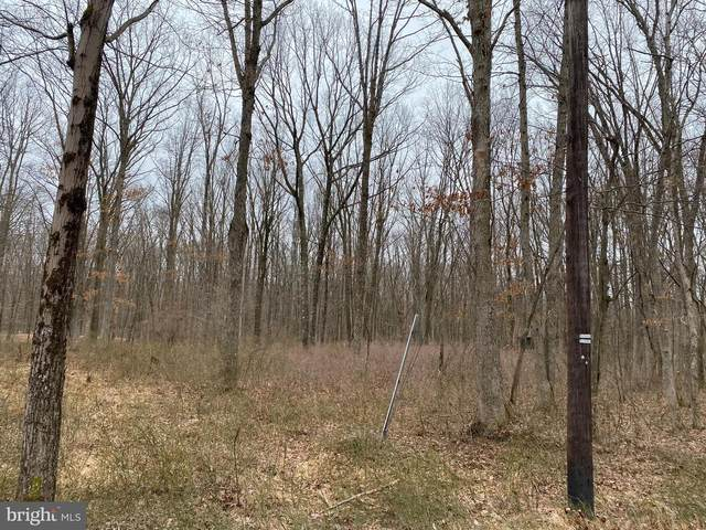 Lot# WO73 Oak Lane W, LEHIGHTON, PA 18235 (#PACC117480) :: ExecuHome Realty