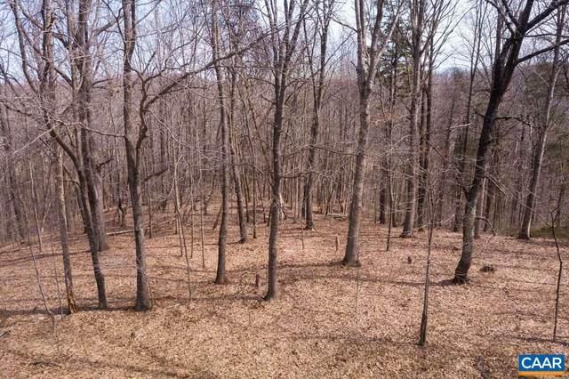 22 Mountain Laurel Ridge, CHARLOTTESVILLE, VA 22903 (#614916) :: ExecuHome Realty