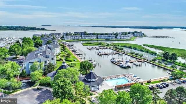 132 Oyster Cove Drive, GRASONVILLE, MD 21638 (#MDQA147092) :: Bob Lucido Team of Keller Williams Lucido Agency