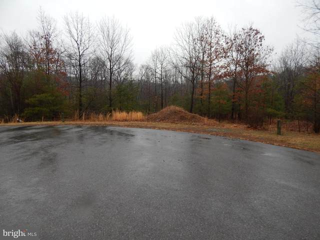 Lot 26 Megans Terrace, BERKELEY SPRINGS, WV 25411 (#WVMO118182) :: The Redux Group