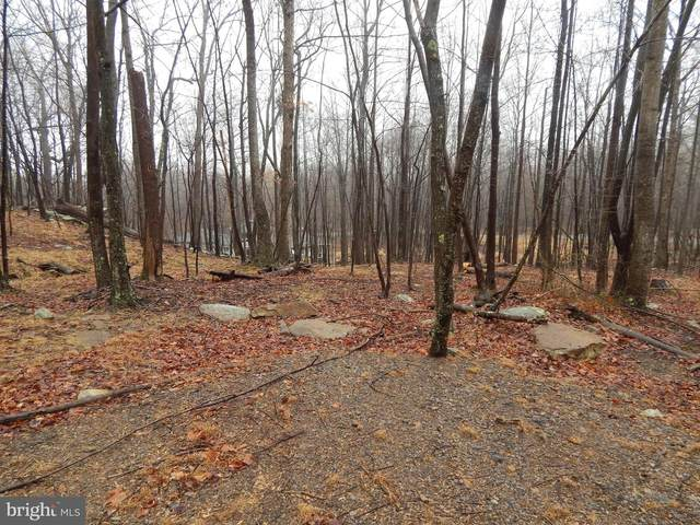 Lot 37 Parkside Court, BERKELEY SPRINGS, WV 25411 (#WVMO118184) :: The Redux Group