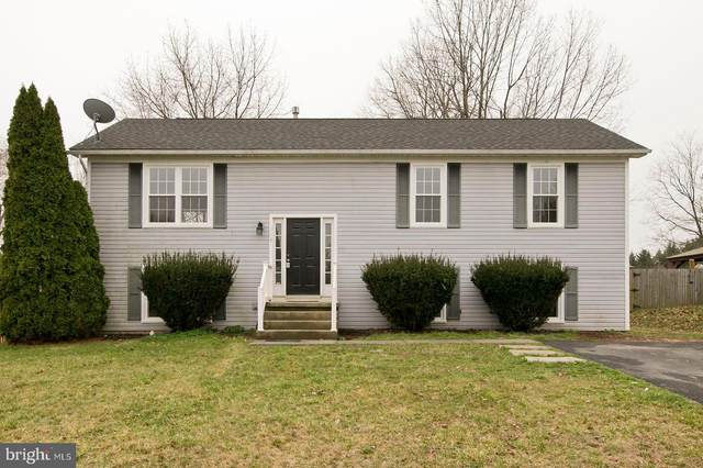 116 Woodrow Road, WINCHESTER, VA 22602 (#VAFV162800) :: SURE Sales Group