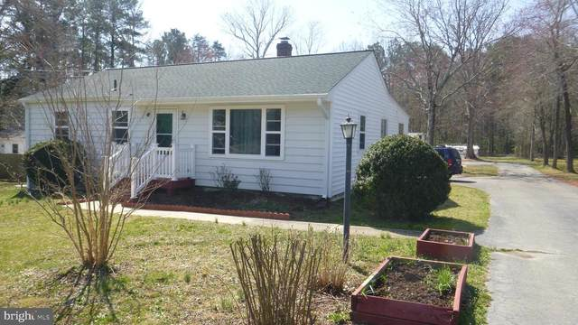 21911 Point Lookout Road, LEONARDTOWN, MD 20650 (#MDSM175110) :: Realty One Group Performance