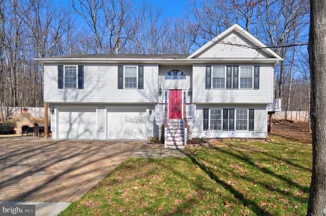 803 Crow Drive, WINCHESTER, VA 22602 (#VAFV162816) :: The Matt Lenza Real Estate Team