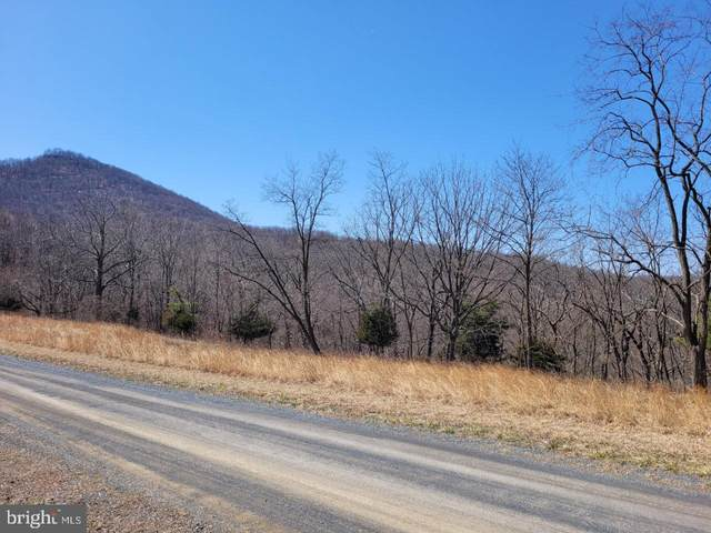 High View Road, PURGITSVILLE, WV 26852 (#WVHS115438) :: The Mike Coleman Team