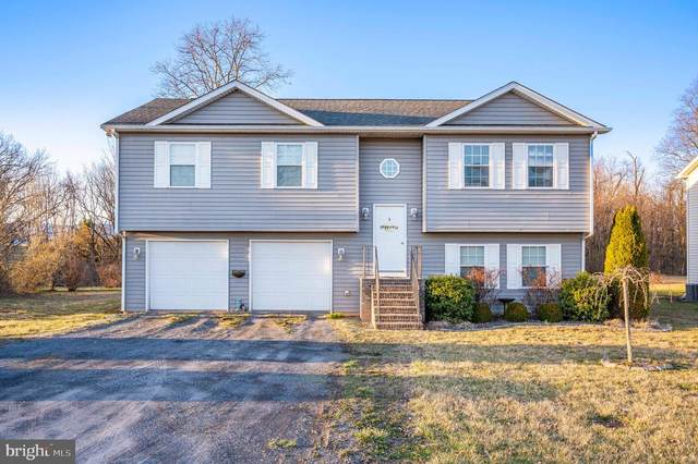 4462 Palmyra Church Road, EDINBURG, VA 22824 (#VASH121782) :: Advance Realty Bel Air, Inc