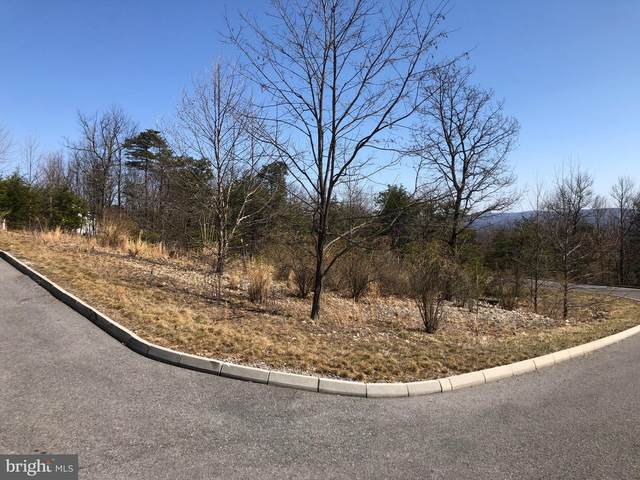 Lot 10 Arrowhead Trail, CUMBERLAND, MD 21502 (#MDAL136462) :: Eng Garcia Properties, LLC