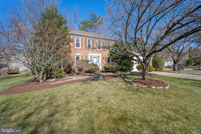 310 Opera Court, SILVER SPRING, MD 20901 (#MDMC749296) :: Realty One Group Performance